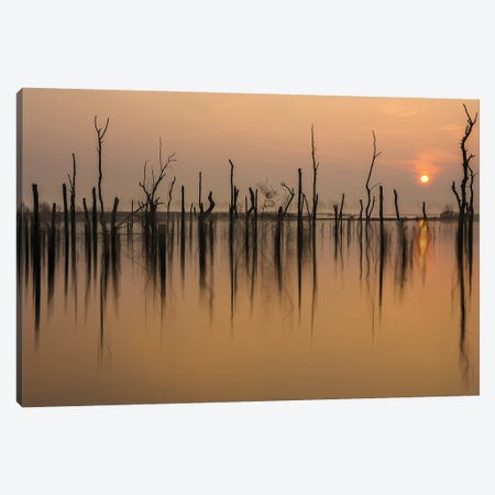 Drowned Forest Canvas Print #OXM4757} by Piet Haaksma Art Print