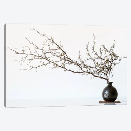 Vase And Branch Canvas Print #OXM4761} by Prbimages Art Print