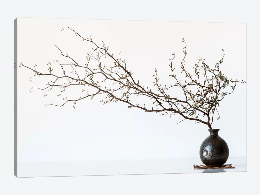 Vase And Branch by Prbimages 1-piece Art Print