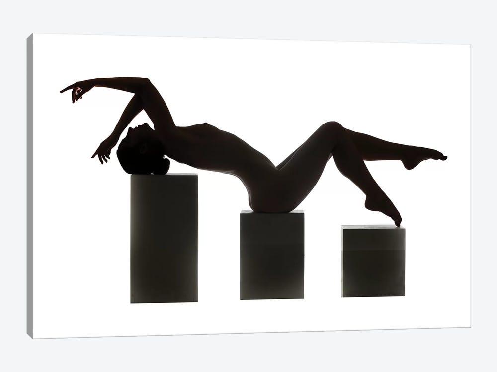 Silhouette by Ross Oscar 1-piece Art Print