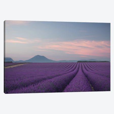 Lavender Field Canvas Print #OXM4783} by Rostovskiy Anton Canvas Print