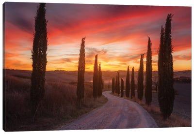 Tuscany Sunset Canvas Art Print
