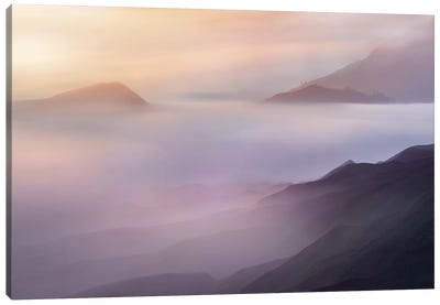 Vanilla Canvas Art Print