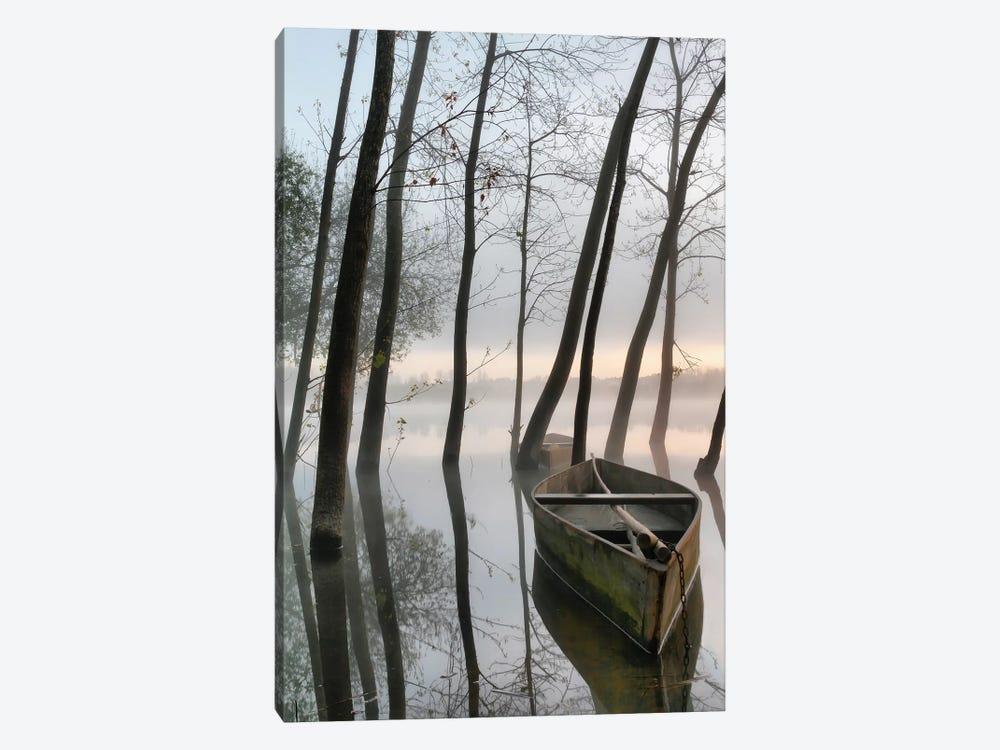 Serene Dawn by Rui David 1-piece Canvas Art Print