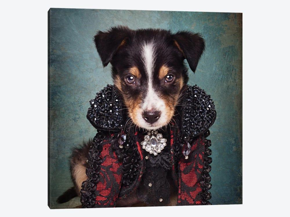 Shelter Pets Project - Loki by Tammy Swarek 1-piece Canvas Art