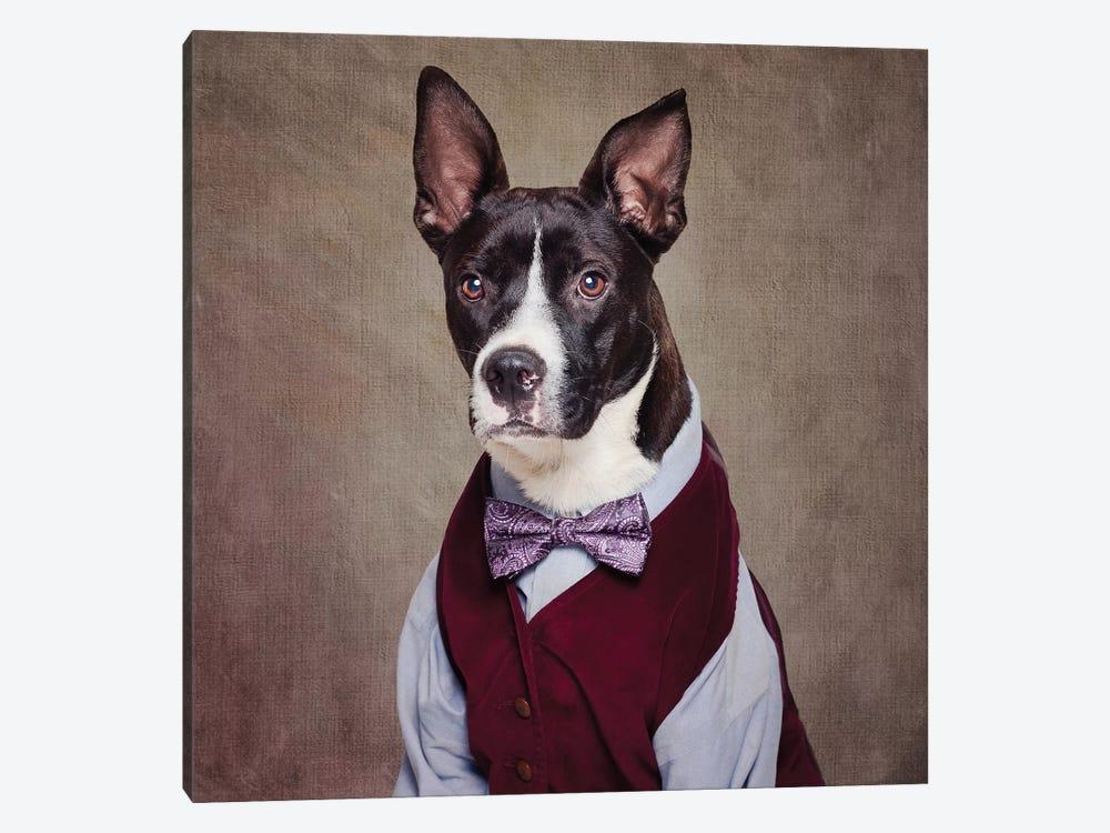 Shelter Pets Project - Petey by Tammy Swarek 1-piece Canvas Art