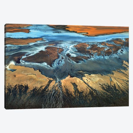 California Aerial - The Desert From Above Canvas Print #OXM4819} by Tanja Ghirardini Canvas Print