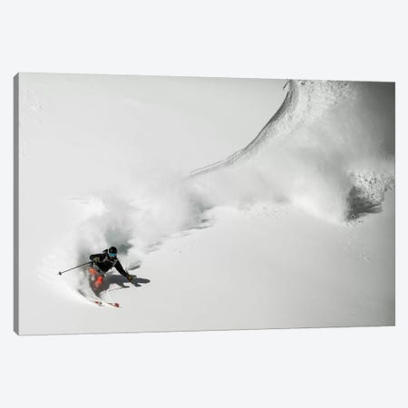 Swing Canvas Print #OXM483} by Benjamin Trevillot Canvas Wall Art