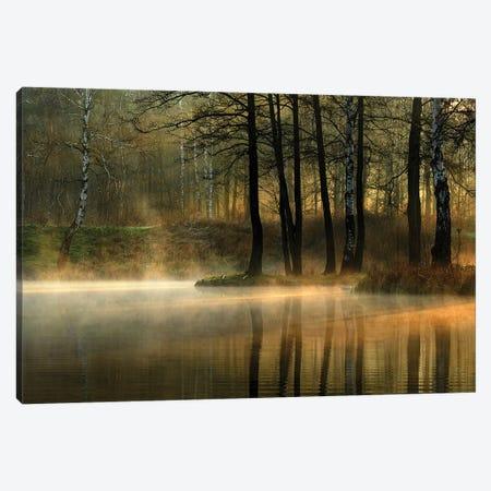 Silent Light. Canvas Print #OXM4863} by Agnieszka Jankowska Canvas Artwork