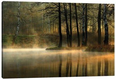 Silent Light. Canvas Art Print