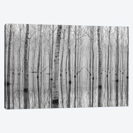 Novembre 2014 Canvas Print #OXM486} by Aglioni Simone Art Print