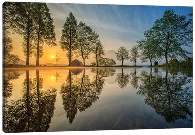 Mount Fuji Reflected In Lake , Japan Canvas Art Print