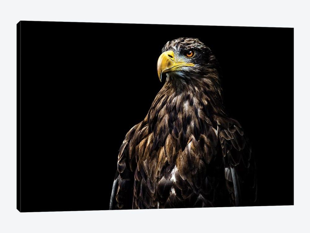 Ego by Christian Lechtenfeld 1-piece Canvas Art