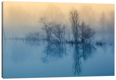 Morning Reflection Canvas Art Print