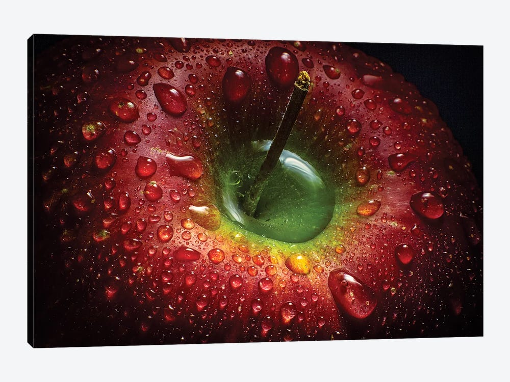 Red Apple 1-piece Canvas Print