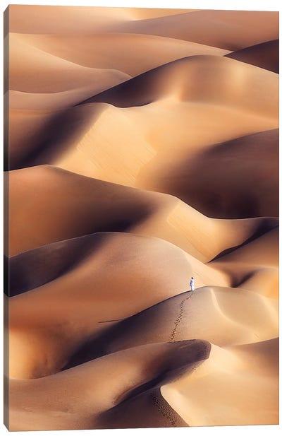 Chocolate Dunes Canvas Art Print