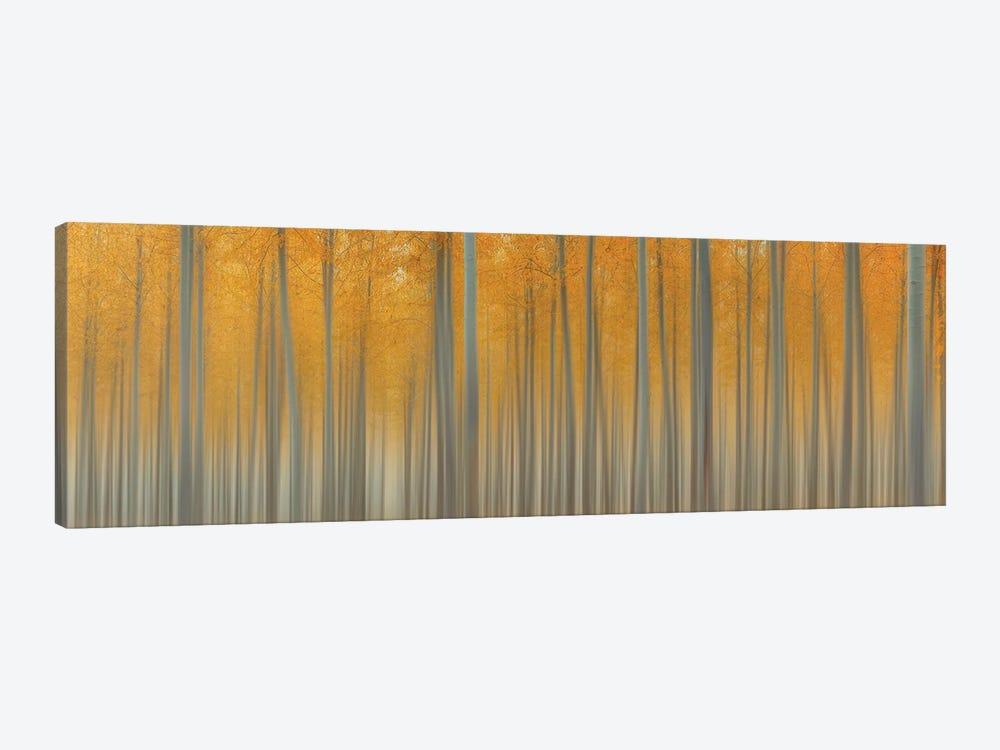 Autumn Delight by Lydia Jacobs 1-piece Canvas Art