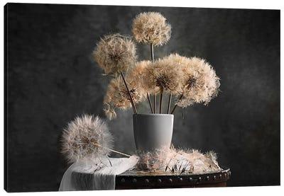 Dandelion Seed Pod Canvas Art Print