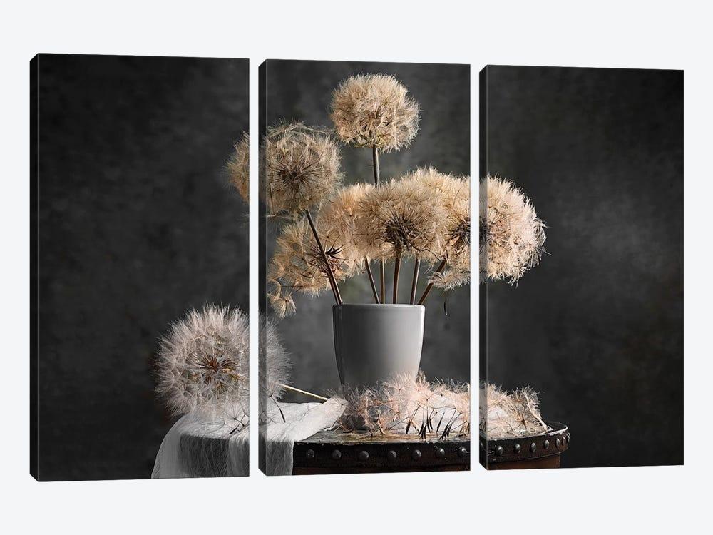Dandelion Seed Pod by Lydia Jacobs 3-piece Art Print