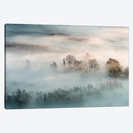 Winter Fog 3-Piece Canvas #OXM4933} by Marco Galimberti Canvas Artwork