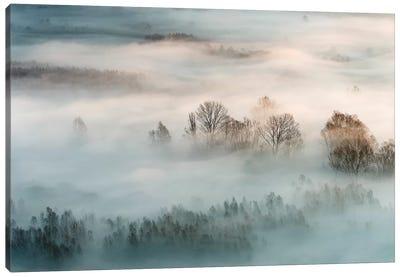 Winter Fog Canvas Art Print