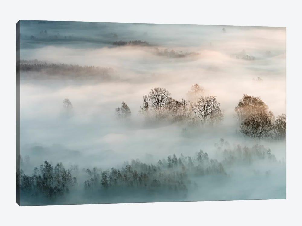 Winter Fog by Marco Galimberti 1-piece Canvas Print