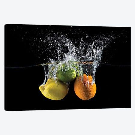 Citrus Splash Canvas Print #OXM4943} by Mogyorosi Stefan Art Print