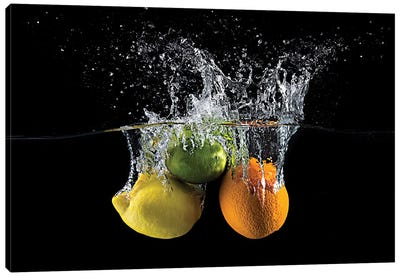 Citrus Splash Canvas Art Print