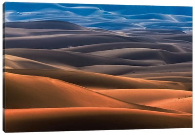 Dream Desert Canvas Art Print