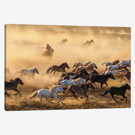 Horse Run Canvas Print #OXM4963} by Adam Wong Art Print
