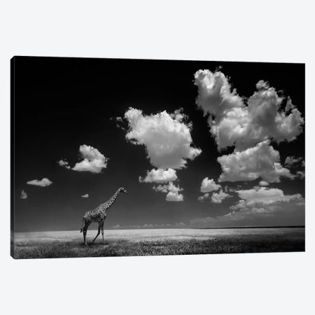 Gone With The Clouds Canvas Print #OXM497} by Alberto Ghizzi Panizza Canvas Artwork