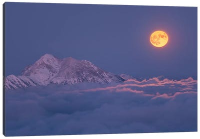 Super Moon Rises Canvas Art Print