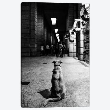 The Wait Canvas Print #OXM4983} by Alessandro Perino Canvas Art Print