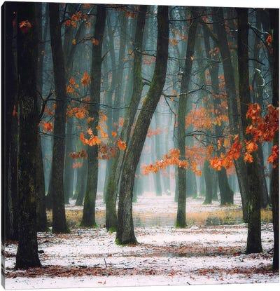Autumn In My Soul Canvas Art Print