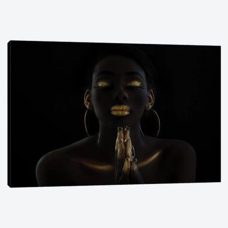 Untitled Canvas Print #OXM4997} by Amnon Eichelberg Canvas Print