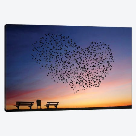 Love Is In The Air Canvas Print #OXM5004} by Annemieke Canvas Wall Art