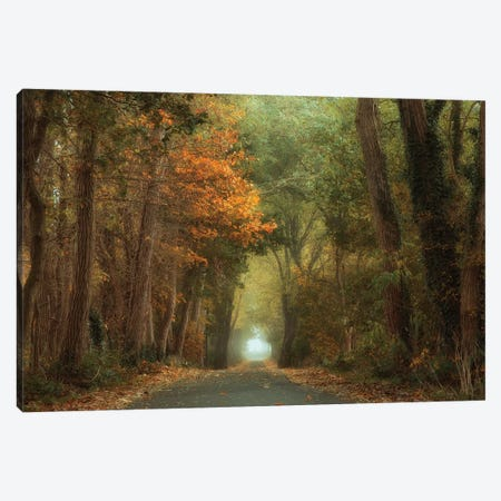 Country Road Canvas Print #OXM5005} by Anton van Dongen Canvas Wall Art