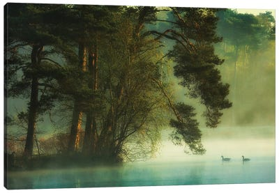 Dutch Fen Canvas Art Print