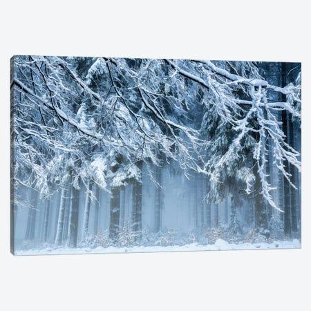 Snowworld Canvas Print #OXM5007} by Anton van Dongen Canvas Artwork