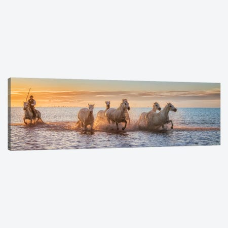 Camargue Horses Ii Canvas Print #OXM5009} by Antoni Figueras Canvas Print