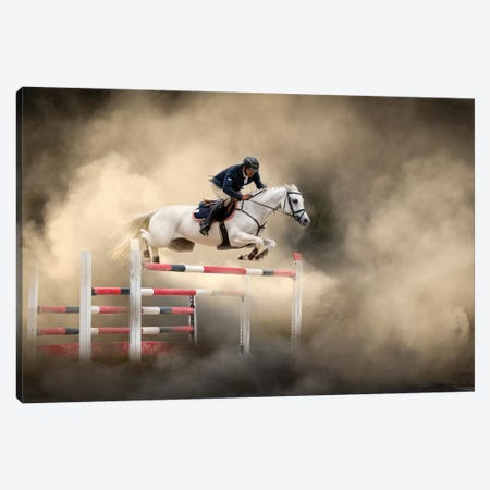 White Horse Canvas Print #OXM5014} by Arif Ünsal Canvas Art Print