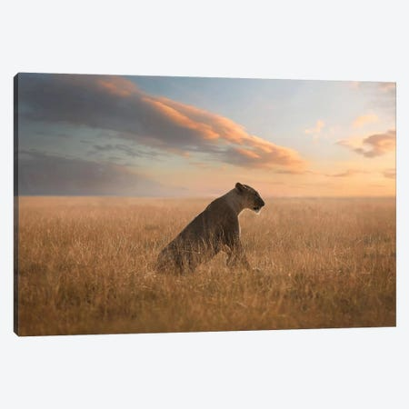 The Queen Canvas Print #OXM5033} by Bjorn Persson Canvas Wall Art