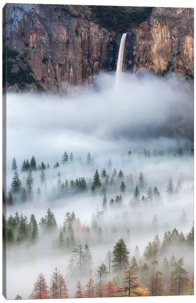 Mist Falls Canvas Art Print