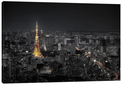 Tokyo At Night Canvas Art Print