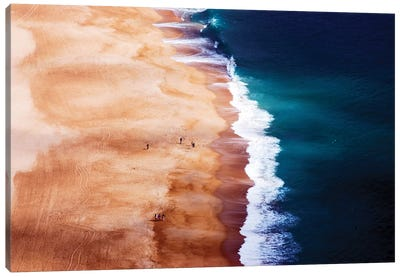 Silver Coast Canvas Art Print