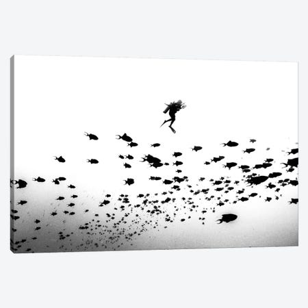 Pied Piper Of Hamelin Canvas Print #OXM5048} by Charlie Jung Art Print
