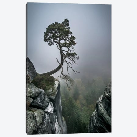 Against The Odds Canvas Print #OXM504} by Andreas Wonisch Canvas Artwork