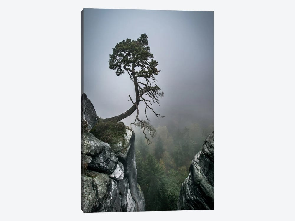 Against The Odds by Andreas Wonisch 1-piece Canvas Art Print