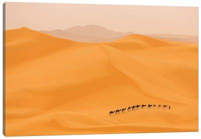 Camels Caravan In Sahara Canvas Art Print
