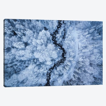 A Freezing Cold Beauty Canvas Print #OXM5065} by Daniel Gastager Canvas Wall Art